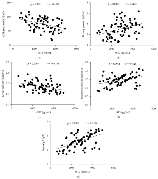 Correlation analysis of serum sST2 with the values of clinical parameters in IgAN patients. The potential correlations between serum sST2 and the values of clinical parameters were analyzed by Spearman correlation tests. Data shown are the mean concentration of individual subjects from two separate experiments. (a) Serum sST2 levels were correlated negatively with the values of eGFR. (b) Serum sST2 levels were correlated positively with the concentrations of 24-hour urinary proteins. (c) Serum sST2 levels were correlated negatively with serum calcium. ((d)-(e)) Serum sST2 levels were correlated positively with serum phosphorus and serum IgA, respectively.