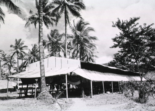 <p>Exterior view of an ward.  The makeshift building is set amidst palm trees.  The sides of the building are flaps that are raised, exposing the interior of the ward.</p>