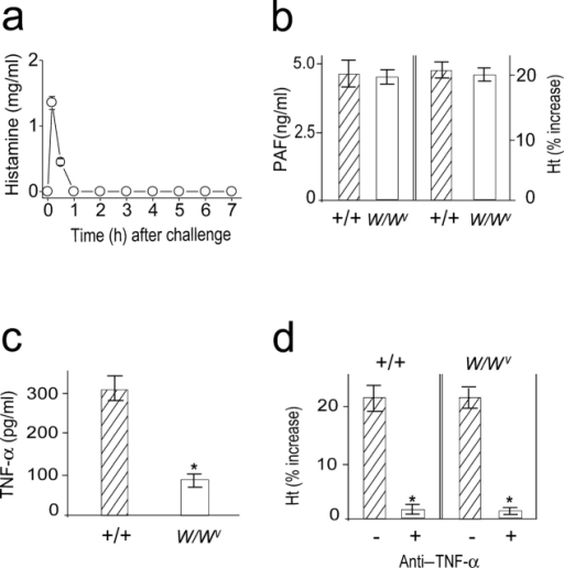 Mast cells are not involved in the late phase of anaphylaxis. (a) Time course of plasma histamine levels after challenge in C57BL/6 mice. (b) The late phase increase in plasma PAF and hematocrit value in W/Wv mice. Blood was collected 7.5 h after challenge injection. (c) Comparison of serum levels of TNF-α between +/+ and W/Wv mice during anaphylaxis. Blood was collected 80 min after challenge injection. (d) Inhibition of the second phase of increase in hematocrit value by anti–TNF-α Ab. 2 mg/mouse Ab was injected i.p. 45 min after challenge injection. Results for all panels are expressed as the mean ± SEM of three separate experiments (n = 3 for each time point). P < 0.01 versus control; Mann-Whitney U test.