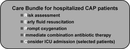 A care bundle for management of severe CAP patients in the emergency department. CAP, community-acquired pneumonia; ICU, intensive care unit.