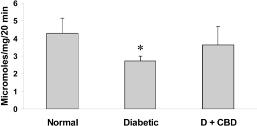 Cannabidiol (CBD) restores diabetes-impaired glutamine synthetase (GS) activity. Glutamine synthetase activity measured by the ability of the sample to convert 14C-glutamate to 14C-glutamine demonstrated significant inhibition of GS activity in diabetic rat retinas compared with controls. The GS activity was restored by treating the diabetic animals with CBD (10 mg/kg/2days, i.p.; n=4–5 retinas/group, *p<0.05, versus control [standard error of mean]).