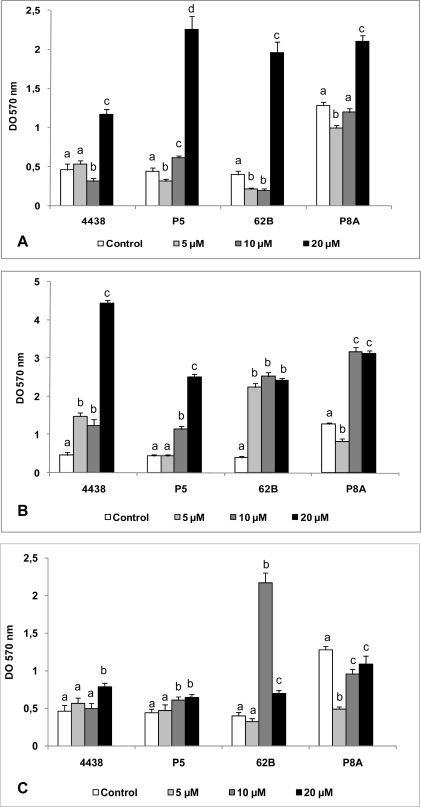 Effect of AHLs on biofilm formation ability of peanut-nodulating strains.The biofilm formation ability of peanut-nodulating strains was determined after 72 h incubation in TY medium supplemented with various concentrations of 3OC10 AHL (A), 3OC12 AHL (B), and 3OC14 AHL (C). Values indicated by different letters are significantly different from each other according to Fisher's LSD test (P < 0.05).