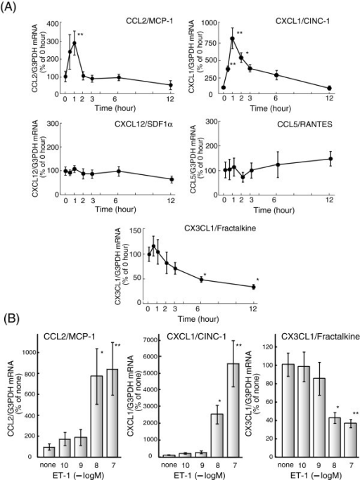 Effect of ET-1 on chemokine mRNA expression in cultured ratastrocytes. (A) Serum-starved astrocytes were treatedwith 100 nM ET-1 for the times indicated. The expression of CCL2, CXCL1,CCL5, CXCL12 and CX3CL1 mRNA was normalized to G3PDH and expressed asthe % of 0 hour. Data are the mean ± SEM of 6 to 16 experiments.*P <0.05 and **P <0.01 versus 0hour by one-way ANOVA followed by Dunnett's test. (B)Astrocytes were treated with the indicated concentrations of ET-1 forone (CCL2 and CXCL1) or six (CX3CL1) hours. Data are the mean ± SEMof five to eight experiments. *P <0.05 and **P<0.01 versus none by one-way ANOVA followed byDunnett's test. ANOVA, analysis of variance; ET-1, endothelin-1;G3PDH, glyceraldehyde-3-phosphate dehydrogenase; SEM, standard error ofthe mean.