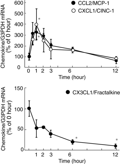 Effects of Ala1,3,11,15-ET-1 on CCL2, CXCL1and CX3CL1 mRNA expression in cultured rat astrocytes.Serum-starved astrocytes were treated with 100 nMAla1,3,11,15-ET-1 for the times indicated. The expressionof CCL2, CXCL1 and CX3CL1 mRNA was normalized to G3PDH and expressed asthe % of 0 hour. Data are expressed as the mean ± SEM of 4 to 14experiments. *P <0.05 versus 0 hour by one-wayANOVA followed by Dunnett's test. ANOVA, analysis of variance;ET-1, endothelin-1; G3PDH, glyceraldehyde-3-phosphate dehydrogenase;SEM, standard error of the mean.