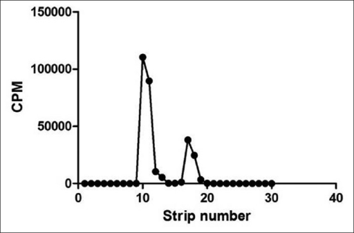 Paper electrophoretic pattern of reaction mixture after radioiodination of BSA.