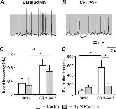 Pharmacological blockade of BK channels reduces bursting activityA, representative traces of corticotrophs pretreated with 1 μm paxilline, which reduces CRH/AVP-evoked bursting behaviour (B). C, paxilline has no effect on the ability of CRH/AVP to increase event frequency but significantly reduces event duration (D). Data are means ± SEM (n = 7 per group). *P < 0.05, **P < 0.01, ANOVA compared to respective base values.