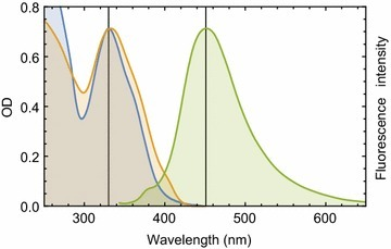 Absorption and fluorescence behavior of compound 5 in the UV–Visible range. Absorption spectrum of compound 5 in 20 mM Tris–HCl buffer of pH 7.4 is shown in blue. Fluorescence emission and excitation spectra of compound 5 are shown in green and yellow, respectively. Compound 5 fluorescence spectra were recorded in the same buffer and normalized against its absorption spectrum