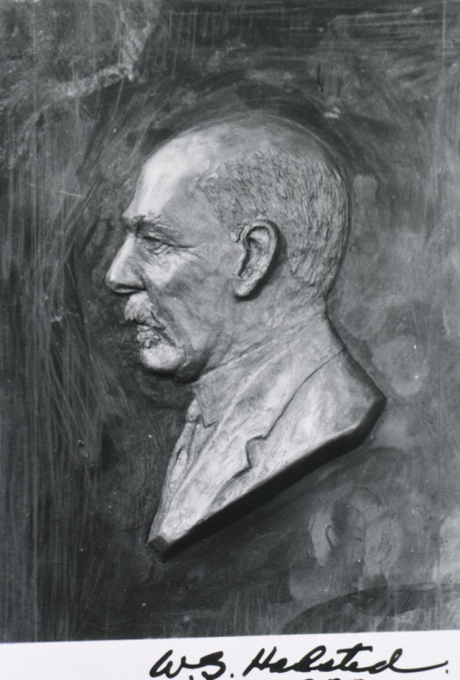 <p>Bas relief, head and shoulders, left profile.</p>