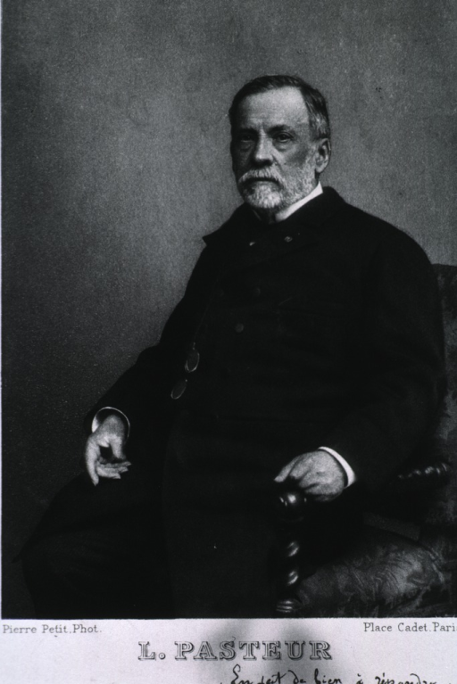 <p>Seated, arms on chair, left pose.</p>