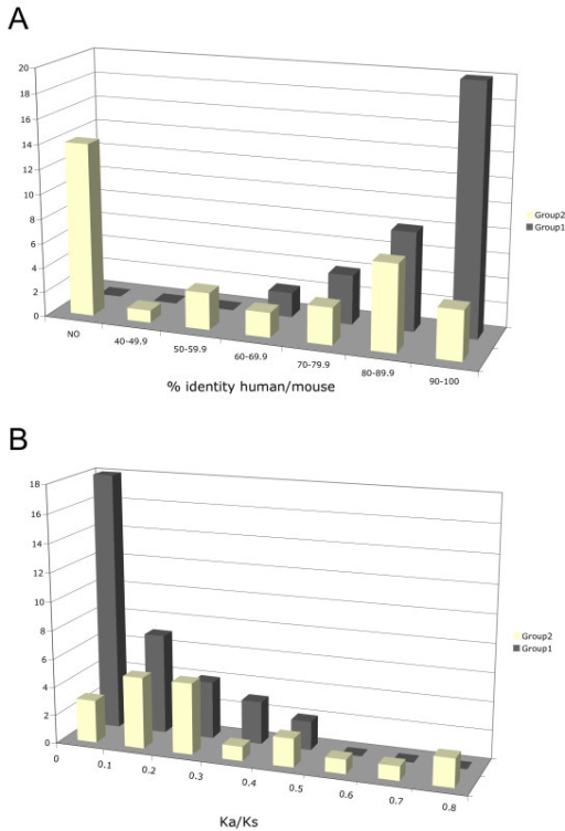 Group 1 and group 2 TRIM gene conservation in human and mouse. A) Distribution of the percentage of amino acid identity between human TRIM and TRIM-like proteins and their murine counterparts. Group 2 (yellow) and group 1 (grey). The bars represent the number of human TRIM genes (Y axis) for each percentage of identity interval (X axis); NO indicates absence of a murine counterpart. B) Distribution of the Ka/Ks ratios observed in human-mouse orthologous TRIM pairs considering the two groups separately. The bars represent the number of TRIM pairs (Y axis) for each Ka/Ks value interval (X axis).