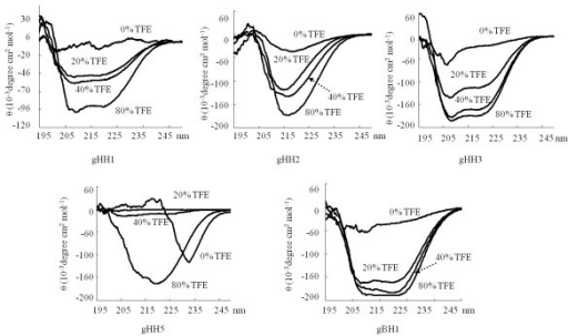 CD spectroscopy analyses of peptides. CD spectroscopic results of gHH1, gHH2, gHH3, gHH5 and gBH1 in PBS solution with 0%, 20%, 40%, 80% TEF, respectively. The gHH1, gHH3 and gBH1 peptides adopted a standard α-helical conformation with double minima at 208 nm and 222 nm in a PBS-buffered solution and remained practically unaltered in the presence of TFE. CD analysis of gHH2 showed that the peptide adopted a β-sheet conformation in buffer solution, and its CD spectra remained practically unaltered in TFE solution. gHH5 had a structural change from random coil to α-helical structure when the peptide was transferred from a polar environment to membrane interfaces using aqueous mixtures of TFE.