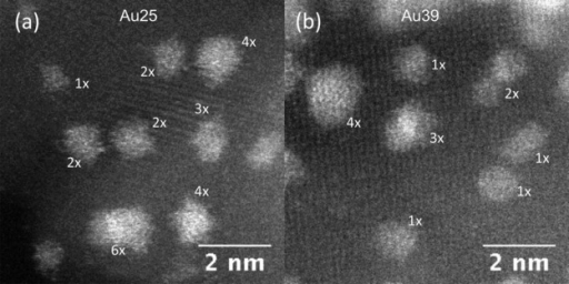 High resolution HAADF-STEM images taken from: a) Au25, and b) Au39 samples, respectively. The mass of the clusters were labeled as times of either Au25 or Au39 monometers in each case.