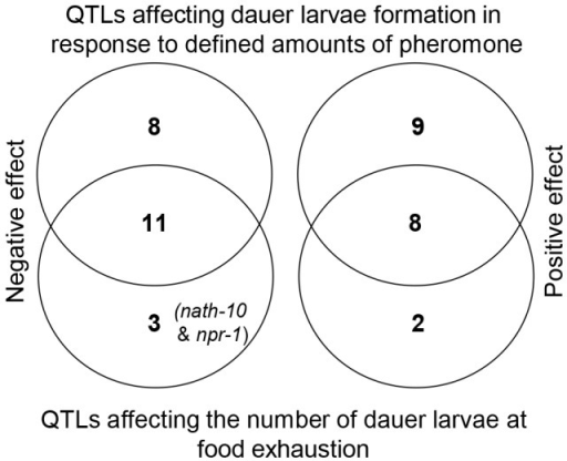 Most QTLs affecting the number of dauer larvae at food exhaustion in growing populations overlap with QTLs affecting dauer larvae formation in response to defined amounts of pheromone.Venn diagrams showing the overlap between QTLs that affect dauer larvae development in response to defined amounts of pheromone (upper circles) and QTLs that affect the number of dauer larvae at food exhaustion in growing populations (lower circles). Negative effect QTLs, where the CB4856 allele decreases the number of dauer larvae, are shown in the left hand diagram and positive effect QTLs, where the CB4856 allele increases the number of dauer larvae, are shown in the right hand diagram.