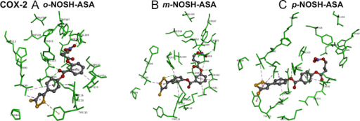 Docking of positional isomers of NOSH-ASA to the active site of cyclooxygenase-2. Hydrogen atoms are not shown for clarity. Polar and nonpolar interactions are colored coded and details are provided in text.