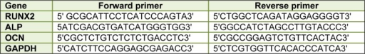 Primer sequences used in real-time RT-PCR