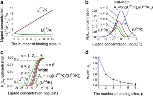 Model predictions for the half-maximal effective ligand concentrations as a function of the number of binding sites and ligand concentration. a. The dependence of the half-maximal effective ligand concentration, U00.5/K and Un0.5/K, for the apo- and saturated multisite protein conformations respectively, on the number of binding sites. The effect of the increasing of the amount of binding sites is negligible for the fully bound conformation. b. Calculations for the half-width between the half-maximal effective ligand concentrations as a function of the ligand concentration for proteins with two, three, four and five binding sites. c. The difference between ligand concentrations for the saturated multisite protein conformations when the protein species equal to 90 % and 10 % of the total concentration as a function of the ligand concentration for the proteins with one to six binding sites. d. The difference between ligand concentrations for the saturated multisite protein conformations when the protein species equal to 90 % and 10 % of the total concentration as a function of the number of binding sites up to six