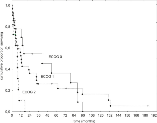 Overall survival of patients with Eastern Cooperative Oncology Group (ECOG) performance status of 0, 1, and 2.
