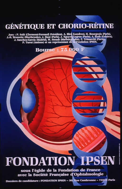 <p>Predominantly teal and orange poster with white lettering.  Title at top of poster.  Additional text below title announces the jury for a competition and amount of the prize.  Visual image is an illustration incorporating a double helix and a lateral cutaway of the eye.  Publisher and sponsor information, along with note and address for applications, at bottom of poster.</p>