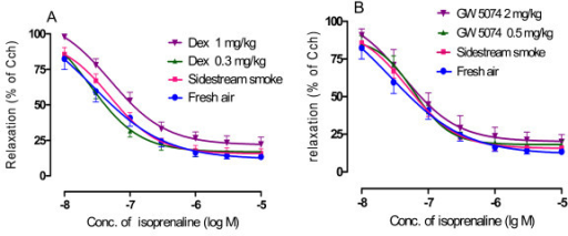 Effect of dexamethasone (A) and GW5074 (B) on the concentration-relaxation curves induced by isoprenaline in the trachea segments isolated from the sidestream smoke exposed mice, which were pre-contracted with carbachol (Cch) 2 × 10-7 M. Results are the percent of relaxation induced by isoprenaline after pre-contraction with carbachol and are expressed as the mean ± SEM. n = six or seven animals/group, *p < 0.05 and **p < 0.01 vs. sidestream smoke exposure group.