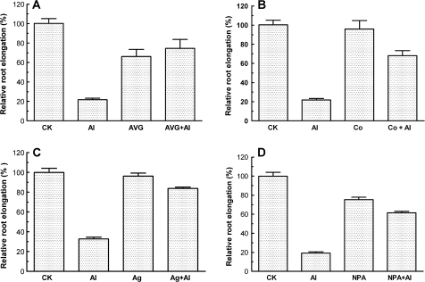 Effect of (A) AVG, (B) Co2+, (C) AgNO3, and (D) NPA on root elongation in the absence and presence of 50 μM AlCl3 (pH 4.5). To minimize the effect of these chemical agents on Al3+ activity, seedlings were first exposed to 10 μM AVG (A), 10 μM CoCl2 (B), or 10 μM NPA (D) for 2 h followed by incubation in 50 μM AlCl3 for another 24 h. For treatment with Ag+, seedlings were first incubated in 10 μM AgNO3 and then exposed to 50 μM Al(NO3)3 for 24 h to determine the effect of Ag+ on root elongation of Arabidopsis wild-type (Col-0) (C). Root elongation was expressed relative to root elongation in the control solution (0.5 mM CaCl2, pH 4.5). Data are means ±SE of >8 roots.