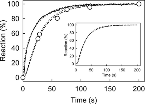 "Kinetic measurement of mantATP with excess of RecD2·dT20: binding, hydrolysis, and Pi release. Time course of mant fluorescence (solid line), mantADP formation (circles), and Pi release (dashed line) is shown. All measurements were at 2.5 μm mantATP, 12.5 μm RecD2, 15 μm dT20, and 10 μm MDCC-PBP (for Pi measurement) and were carried out under the conditions of Fig. 3 as described under ""Experimental Procedures."" The time courses were simulated (dotted lines), based upon a global model for a single turnover of mantATP based on the scheme in Fig. 1B, as described under ""Results."" The simulated mant fluorescence and cleavage time course are in the main panel, and the Pi simulation with the experimental data is in the inset. This gave an observed first order rate constant for mantATP binding ([RecD2] × k+1a) at 200 s−1 followed by the conformation change (k+1b) at 54 s−1, hydrolysis (k+2) at >300 s−1; Pi release (k+3) was fast (>300 s−1)."