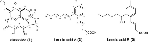 Structures of akaeolide (1) and lorneic acids A (2) and B (3).