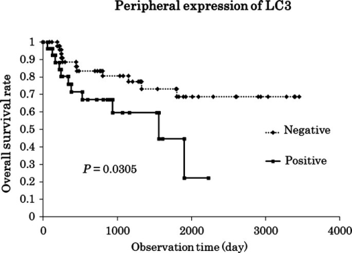 The log-rank test revealed that the positive expression of LC3 in the peripheral site of the tumor led to a significantly shorter survival. Multivariate regression analysis also identified the peripheral expression of LC3 as an independent prognostic factor (P = 0.034).