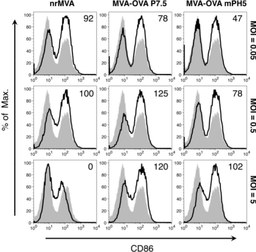 DC CD86 expression depends on the MOI of MVA. DCs were infected with nrMVA, MVA-OVA P7.5, and MVA-OVA mPH5 at different MOIs for 6 h. After washing and further incubation for 16 h, changes in the expression of CD86 were measured by flow cytometry. The MOIs of 0.05, 0.5, and 5 were arbitrarily considered as representative of low, intermediate and high MOI, respectively (open histograms). Mock infected DCs (MVA = 0, shaded histogram) was considered as a basal level of CD86 expression. Numbers in the upper right corners indicate fold-changes as %.