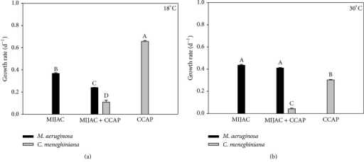 Chlorophyll-a-based growth rate of monocultures and mixed cultures of M. aeruginosa (MIJAC) and C. meneghiniana (CCAP) at two different temperatures (18°C and 30°C). Different letters represent significant differences at p < 0.05.