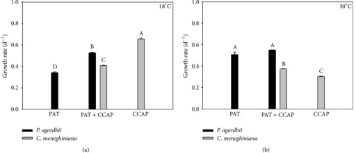 Chlorophyll-a-based growth rate of monocultures and mixed cultures of P. agardhii (PAT) and C. meneghiniana (CCAP) at two different temperatures (18°C and 30°C). Different letters represent significant differences at p < 0.05.