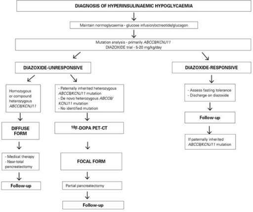 Proposed management algorithm for the treatment of congenital hyperinsulinism
