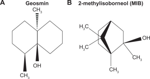 Chemical structure of (A) geosmin and (B) MIB.21,22