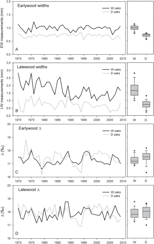 Time series of anlysed tree-ring parameters.(A) Raw earlywood widths, (B) raw latewood widths, (C) earlywood carbon isotope discrimination and (D) latewood carbon isotope discrimination of wet (W) and dry (D) oaks for the period 1970–2008.