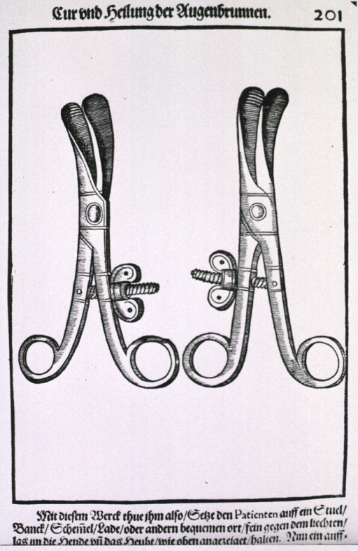 <p>A pair of tweezer-like instruments with flat blades and a screw mechanism for tightening into position on the eyelids.</p>