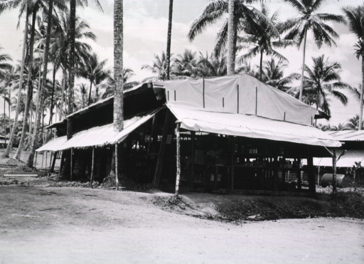 <p>Exterior view of the open-air building serving as the pharmacy.  The buiding stands amidst palm trees.</p>