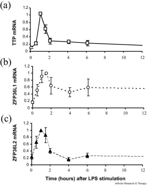 Tristetraprolin (TTP), ZFP36L1, and ZFP36L2 expression patterns in human monocytes stimulated with lipopolysaccharide (LPS). Purified monocytes from healthy human subjects (n = 5) were stimulated with LPS (or phosphate-buffered saline as control). Total cellular RNA from the monocytes was converted to cDNA and analyzed by real-time polymerase chain reaction for (a) TTP, (b) ZFP36L1, and (c) ZFP36L2 expression levels. Resulting Ct values were normalized to the geometric mean of four internal control transcripts and then to corresponding samples from PBS-treated cultures at the same time points, then converted to 2-ΔΔCt. The normalized values were then expressed as a fraction of the mean value at which maximum expression occurred (t = 1 hour for TTP and ZFP36L2; t = 1.5 hours for ZFP36L1). These were then expressed as means ± s.e.m.