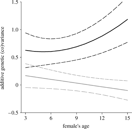 The estimated change in the additive genetic variance in offspring birth weight (solid black line) and in the genetic covariance between offspring birth weight and early-life fecundity (solid grey line) with female's age. Estimated 95% CIs (dashed lines) are plotted. Additive genetic variance for early-life fecundity was 0.289 and constant with age (table 1a).