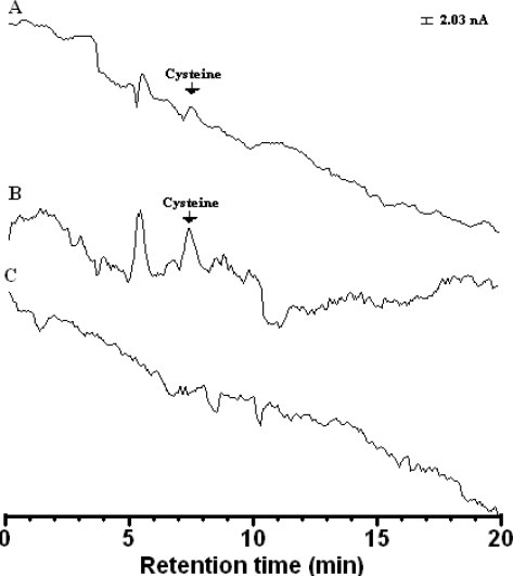 Chromatograms obtained using Au electrode (A) and Au/CFE (B) for cysteine (0.5 mg·L−1) and (C) blank solution. Conditions: electrode, Au–modified carbon fiber detector (length: 8 cm); stationary phase, ThermoQuest Hypersil SCX (particle size 5 μm, 250 mm × 4.6 mm i.d.); Mobile phase, methanol: water (20:80 v/v) containing 1.0 mM acetate buffer (pH 4.65); detection conditions: pulsed conditions, t1 =180 ms, t2 = 180 ms. Initial potential E1(det) = +1.0 V, final potential E2(ox)= +2.0 V, flow rate, 0.5 mL·min−1.