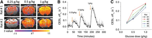 Rat-brain glucoCESL studies at 9.4 T showing near-linear contrast for intravenously administered D-glucose (Glc) doses of 0.25, 0.5, and 1.0 g/kg, and robust detection for doses ⩾0.25 g/kg (in vivo paradigm 1). (A) The t-maps for each dose for two of the animals show highest t-values in the cortex where sensitivity is higher with our surface coil reception. Color scale: t-value. (B) Average of time courses for all animals (n=5, mean±s.e.m.) clearly shows the increase in brain ΔR1ρ with Glc dose. Arrows indicate time of injection. (C) The nearly linear dependence of peak brain ΔR1ρ on Glc dose appears for each individual animal. CESL, chemical exchange-sensitive spin lock.