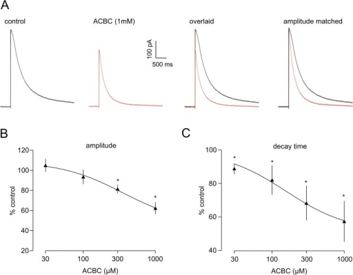 ACBC reduces preNMDAr activity.A. The histogram shows normalised frequency data for 5 neurones and indicates a significant decrease in frequency in the presence of the low-efficacy partial agonist. B. There was no concurrent change in frequency distribution of event amplitudes. C. The averaged mEPSCs recorded in one neurone illustrate that peak amplitude, rise and decay times of events was unaltered by ACBC. * P<0.05