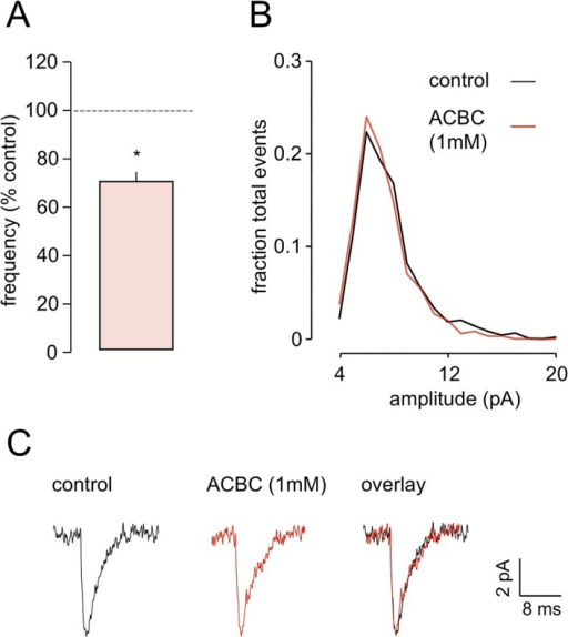 ACBC decreases both the amplitude and the decay time of the postsynaptic eNEPSC.A. Averaged responses for one neurone show a clear decrease in amplitude in the presence of ACBC, and the overlaid traces also indicate a substantial decrease in decay time. Amplitude scaling shows the latter effect very clearly. B and C. The graphs show pooled data for 7 neurones and illustrate the clear concentration-dependency for effects of ACBC on both parameters. * P<0.05.