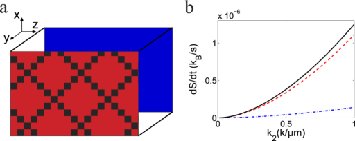 Entropy production of a spherical Brownian particle in a temperature gradient.(a) a box filled with water with the hot (red) and cold (blue) plate aligned in the y-direction; (b) entropy contribution of different terms of Eq. (19) with increasing temperature gradient k2 resulting from the translational motion (dashed line) indicated by γ in the equation and the rotational motion (dot-dashed line) indicated by γ2, two contribution combined (solid line).
