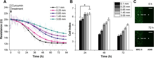 (A) Cellular resistance responses (at 10mV, 10kHz) of A549 tumor cells as a function of time and distance from fibroblasts over 84 h of co-culture in the curcumin treatment condition. The raw data were fitted and converted to CI values with respect to the cell-free electrode responses (2.6 kΩ). (B) CI values of the tumor cells at 5 different distances away from the cultured fibroblasts. The inhibitory effect of fibroblasts on tumor cells was more clearly observed in the toxic environment after 24 h (*p <0.04). (C) The migration rate of fibroblasts into the tumor cell area was assessed using a cell tracker staining assay. In the treatment condition, no significant migration was observed. The gray dots indicate the location of the electrodes arrays. The scale bar represents 500 μm.