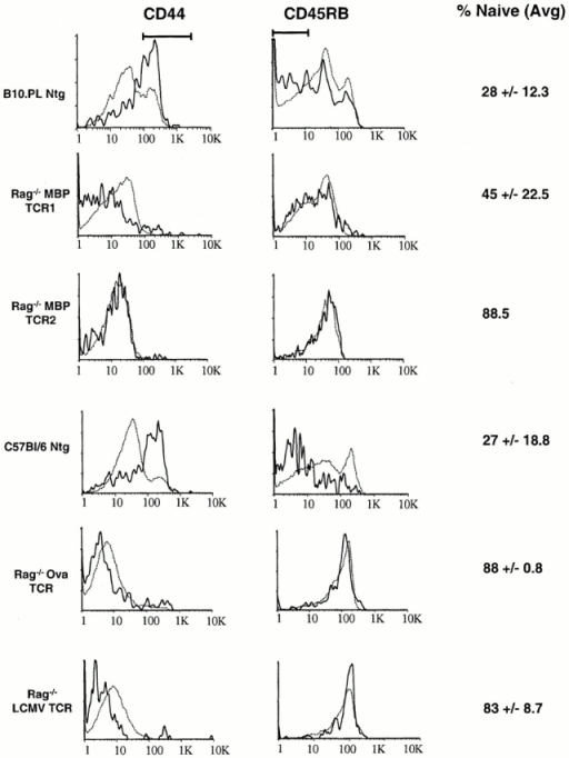 T cells in the CNS of TCR transgenic mice have a predominately naive phenotype. T cells were harvested from the CNS (solid lines) and spleen (dotted lines) as described in Materials and Methods, and stained with monoclonal antibodies specific for TCR, CD44, and CD45RB. The indicated percentage of naive CNS T cells represents the average percentage of TCR+ cells ± one SD that are neither CD44hi nor CD45RBlo (as indicated by the bars).