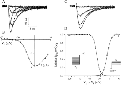 voltage dependence of activation and of inactivation