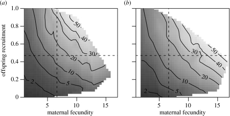 Increased maternal fecundity leads to lower grand-offspring returns for (a) women from landless families, compared with (b) women from landowning families. In addition, increases in the proportion of offspring recruited lead to lower grand-offspring returns in both socio-economic groups. Shown are the predicted values from the minimal adequate Poisson GLMM, with a log link function and random intercepts for each parish and 10-year maternal birth cohort. Contour lines represent different numbers of grand-offspring, with the number of grand-offspring shown on the contour line. The grey shaded area gives an indication of the range of raw data points. The population mean maternal fecundity (6.61) is shown by the vertical dashed lines and the proportion of offspring recruited (0.47) by the horizontal dashed lines.