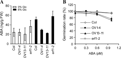 ABA responses of Arabidopsis plants with altered expression of eRF1-2. (A) ABA levels in 10-d-old Arabidopsis seedlings grown on MS and MS with 6% glucose. Fifty milligrams of seedlings were used in ABA extraction. (B) Germination rate of a 6-d-old seedling grown on MS media containing 0, 0.3, 0.6, and 1 μM ABA. Emergence of the radicle is ascribed to germination. The data represent the average of two independent experiments. Bars indicate standard deviation.