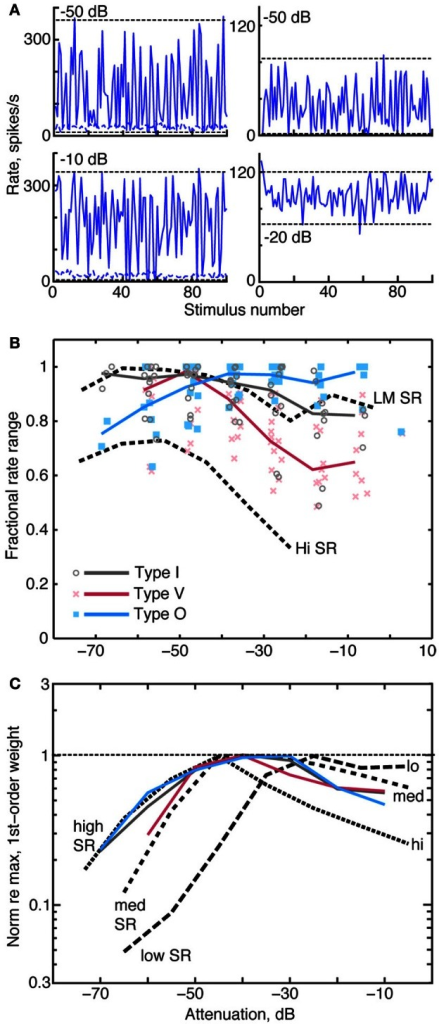 binaural interaction model thesis