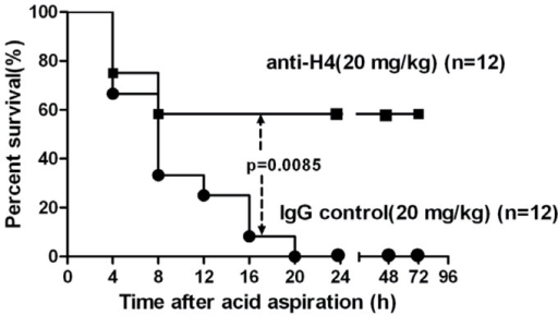 Effect of anti-H4 antibody on survival rates in mice with acid aspiration caused ALI.Anti-H4 antibody (20 mg/ml) or the IgG control (20 mg/ml) were given once intravenously just before acid aspiration (0.3 mol/l, 2 µl g−1). The untreated mice all died within 24 hours (n = 12). Eight of 12 mice Pre-treated with anti-H4 antibody survived the challenge for 72 hours, but the IgG control did not improve the survival rates. Log-rank test was used for comparison of survival time. P<0.05 is viewed as statistically significant.