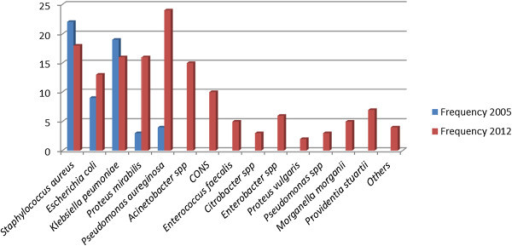 Trend of pathogenic bacterial isolated from SSI in 2005 and 2012.